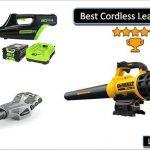 best cordless leaf blower