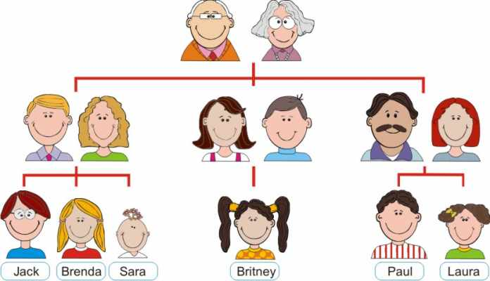 family tree worksheet image